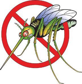 Evviva, la zanzara non c'è più