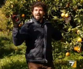 Le arance di Libera contro le mafie