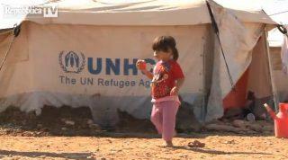 Sostenere l'UNHCR per dare rifugio ai profughi. Dialogo a Erbil con Carlotta Sami