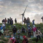 """I cani di David Cameron contro """"lo sciame"""" di migranti dell'Eurotunnel di Calais"""