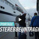 """""""Basterebbe un traghetto"""": Fischia il vento sulle rotte dei migranti"""