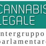 La legalizzazione della cannabis per pensionare l'antistorica guerra alla droga